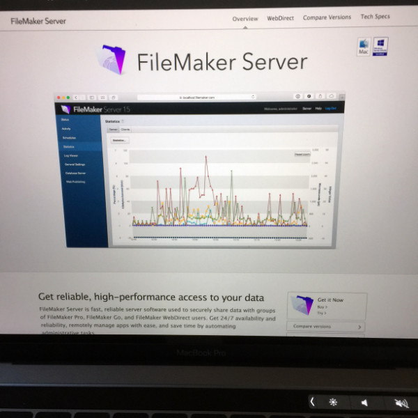 FileMaker Server - shared access on the internet